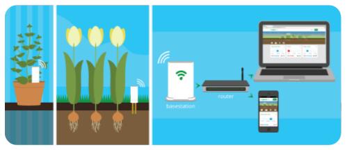 Plantlink Monitoring System.