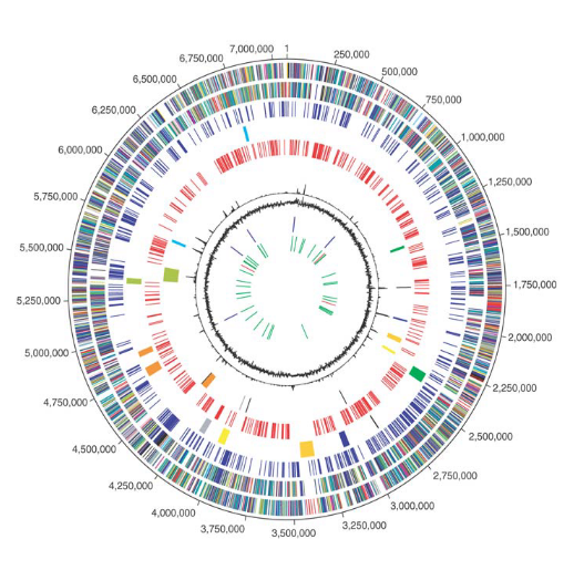 Complete Genome Sequence of P. Fluorescenspf-5