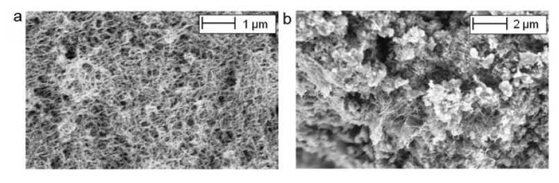 Figure 2: SEM pictures of the CNTCS: (a) water suspension with CNTs; and (b) hardened composite cement paste.