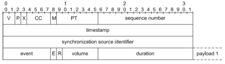 Fig.2. RTP packet of first kind