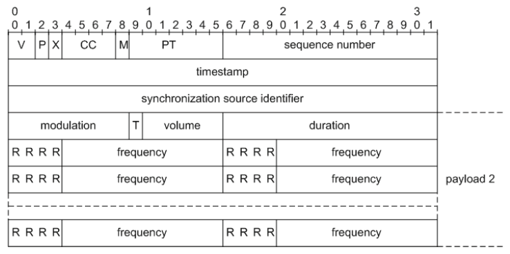 Fig.3. RTP packet of second kind