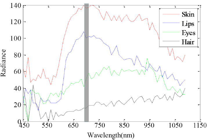 Figure 3 -‐ Chart of the Radiance versus Wavelength for the handler features and skin tissue of subject 2