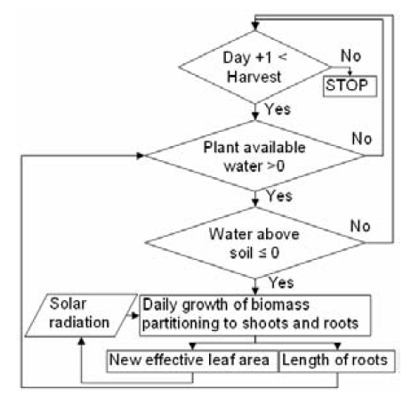 Figure 2. A flowchart of the calculations in the plant growth model.