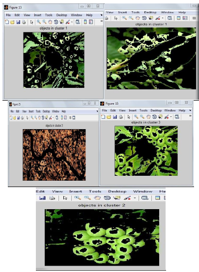 Fig5. clustering to separate plant areas
