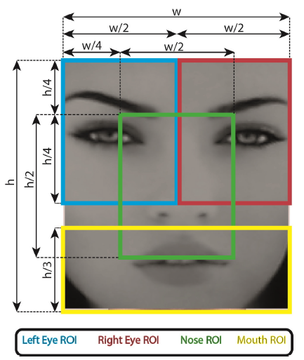 "Figure 11: Relative parts of face ROI division (on a face that was detected by the first call to ""detectMultiScale"")"