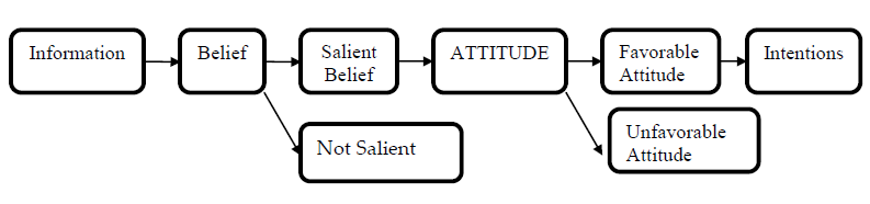 Figure 3: The formation of beliefs, attitudes and intentions