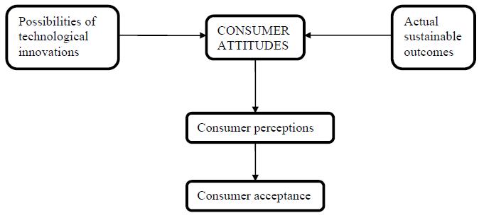Figure 17: What determines consumer buying decision (Ozaki & Sevastyanova, 2010)