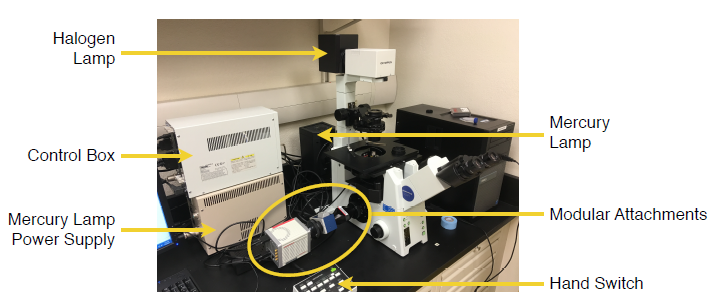 Figure 2 — The final microscope setup as used in this study with relevant labels.
