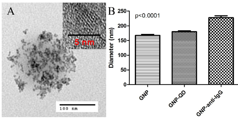 Figure 3-5. Microstructures of hybrid nanoparticles.