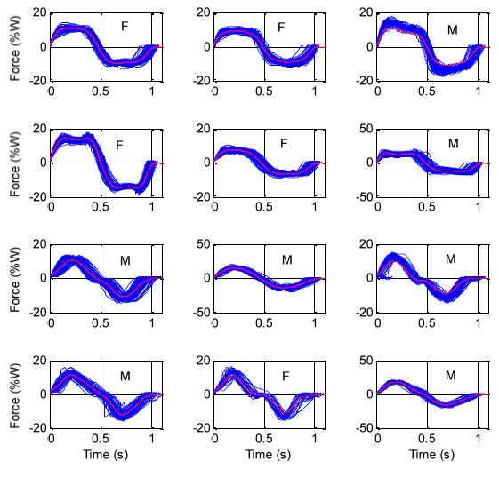 Figure 4.10: Force cycles separated to evaluate cycle durations (side-to-side standing sway)