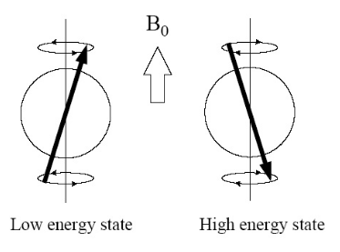 Figure 3.2: The two different energy states a hydrogen spin vector can attain when placed in a static magnetic field B 0