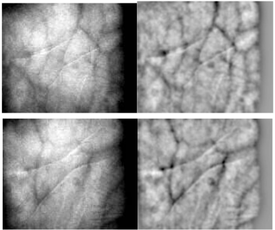 Fig. 6 Sample image data before (left) and after preprocessing (right)