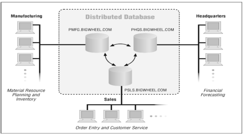 Figure 1. Distributed Database System