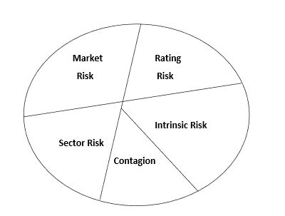 Figure 2.1: Disaggregated Risk Factors Impacting Firm Value
